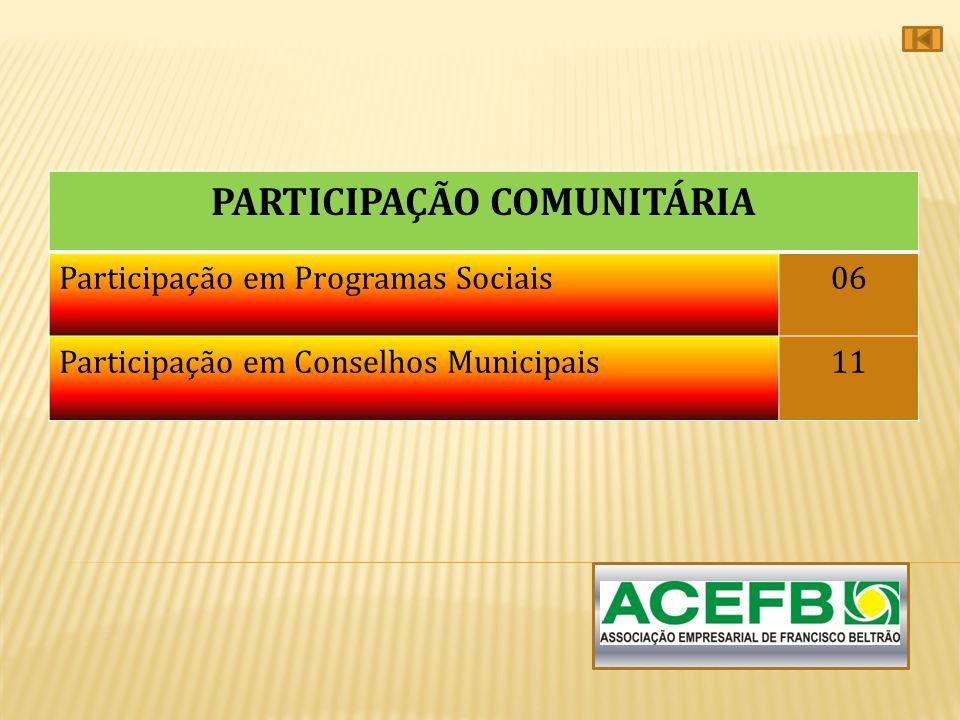 PARTICIPAÇÃO COMUNITÁRIA Participação em Programas Sociais06 Participação em Conselhos Municipais11