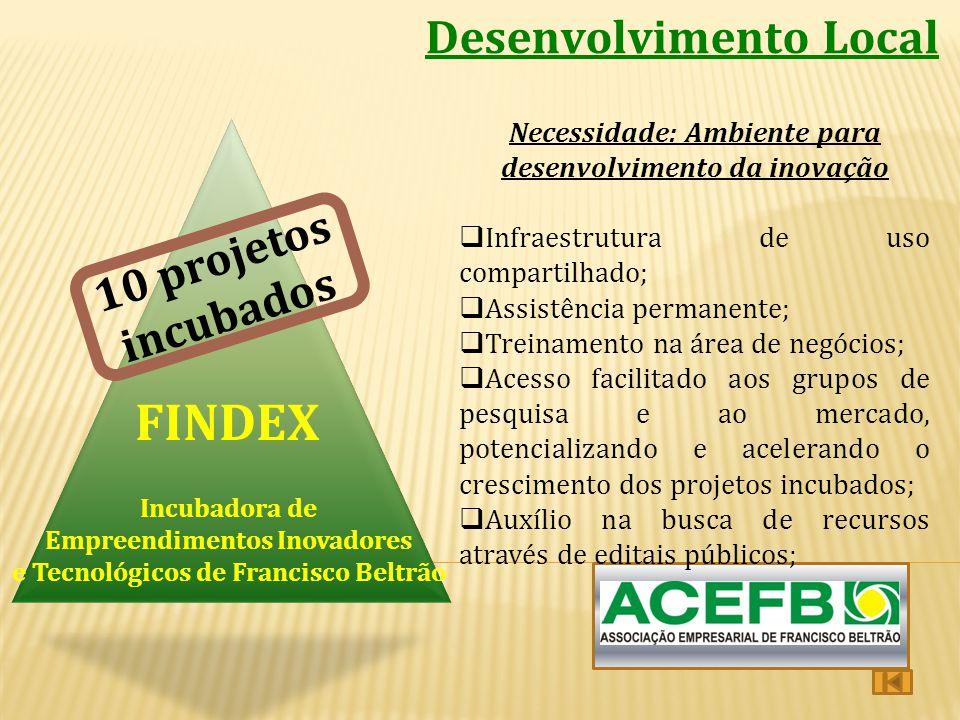 Desenvolvimento Local Incubadora de Empreendimentos Inovadores e Tecnológicos de Francisco Beltrão FINDEX Necessidade: Ambiente para desenvolvimento d