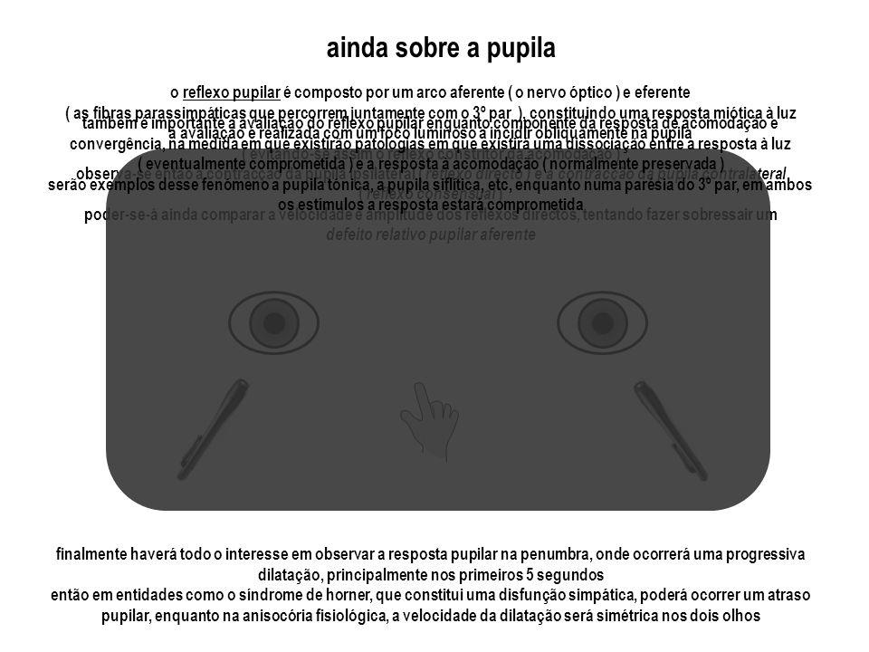 o reflexo pupilar é composto por um arco aferente ( o nervo óptico ) e eferente ( as fibras parassimpáticas que percorrem juntamente com o 3º par ), c