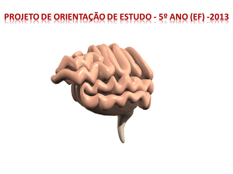 -Do ponto de vista cerebral, chegamos ao mundo incompletos e necessitamos de estímulos para nos desenvolver.