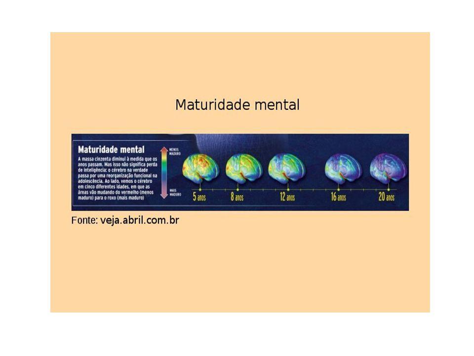 - Na adolescência, o cérebro processa informações emocionais via amígdala.