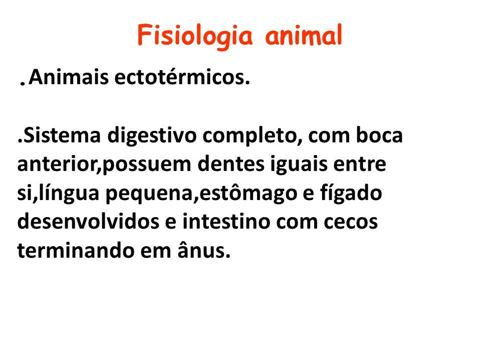 Fisiologia animal. Animais ectotérmicos..Sistema digestivo completo, com boca anterior,possuem dentes iguais entre si,língua pequena,estômago e fígado