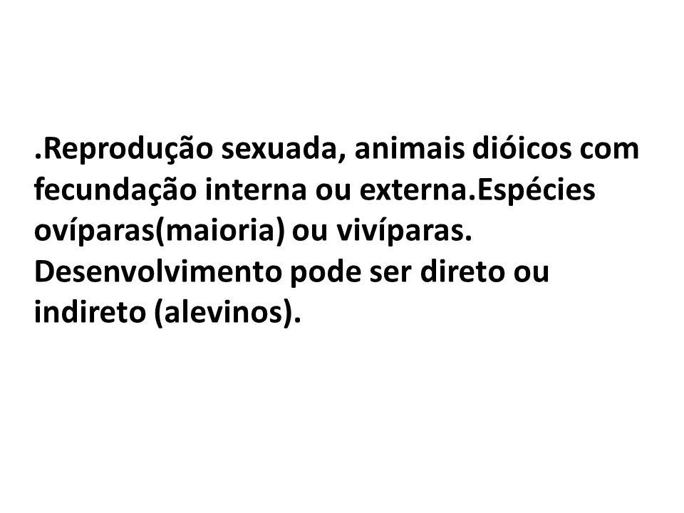 .Reprodução sexuada, animais dióicos com fecundação interna ou externa.Espécies ovíparas(maioria) ou vivíparas. Desenvolvimento pode ser direto ou ind