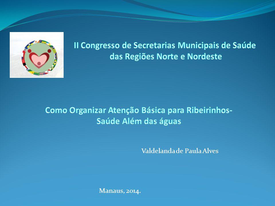 Valdelanda de Paula Alves Manaus, 2014.