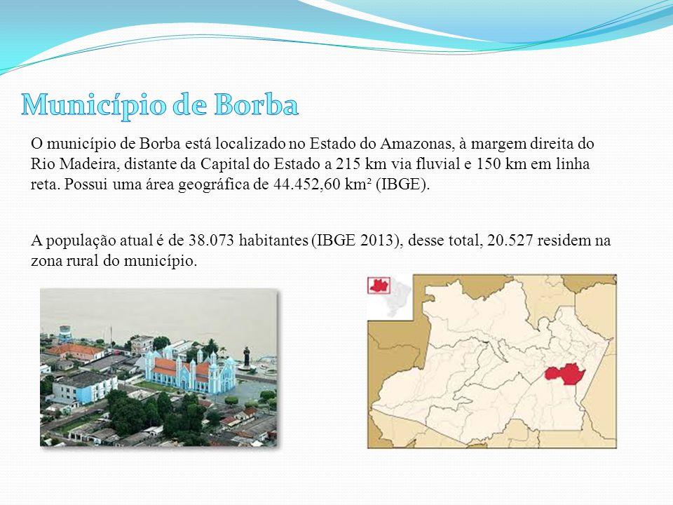 O município de Borba está localizado no Estado do Amazonas, à margem direita do Rio Madeira, distante da Capital do Estado a 215 km via fluvial e 150