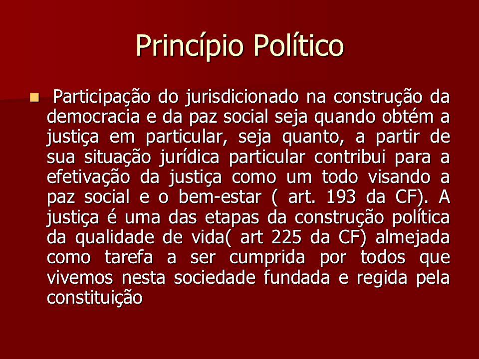 Princípio Político  Participação do jurisdicionado na construção da democracia e da paz social seja quando obtém a justiça em particular, seja quanto