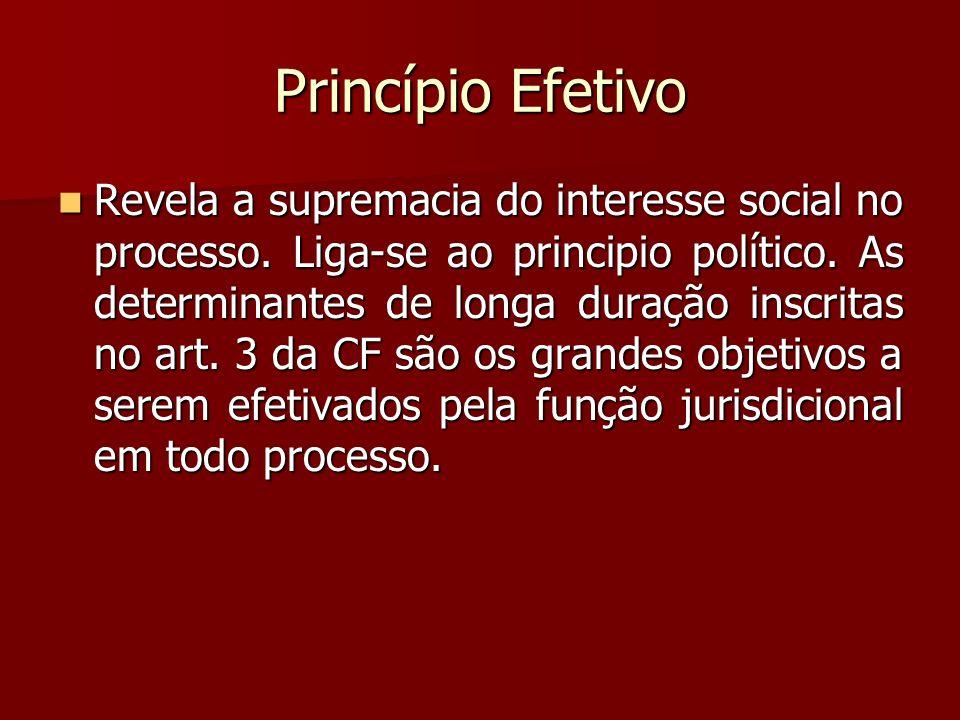 Princípio Efetivo  Revela a supremacia do interesse social no processo. Liga-se ao principio político. As determinantes de longa duração inscritas no