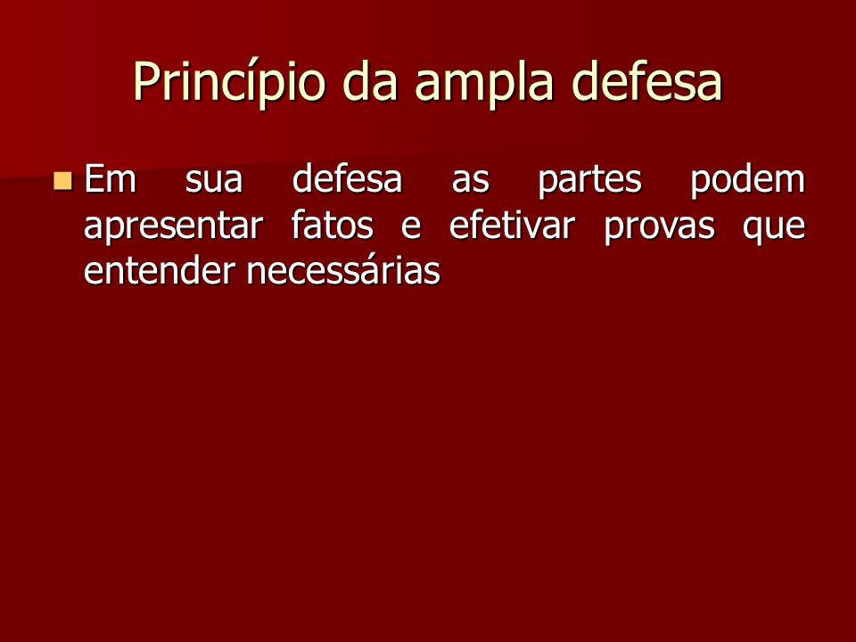 Princípio da ampla defesa  Em sua defesa as partes podem apresentar fatos e efetivar provas que entender necessárias