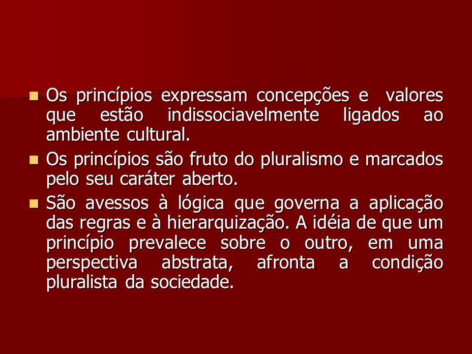  Os princípios expressam concepções e valores que estão indissociavelmente ligados ao ambiente cultural.  Os princípios são fruto do pluralismo e ma
