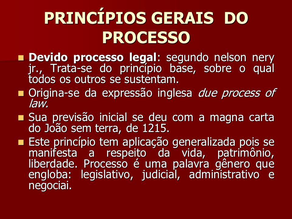 PRINCÍPIOS GERAIS DO PROCESSO  Devido processo legal: segundo nelson nery jr., Trata-se do princípio base, sobre o qual todos os outros se sustentam.