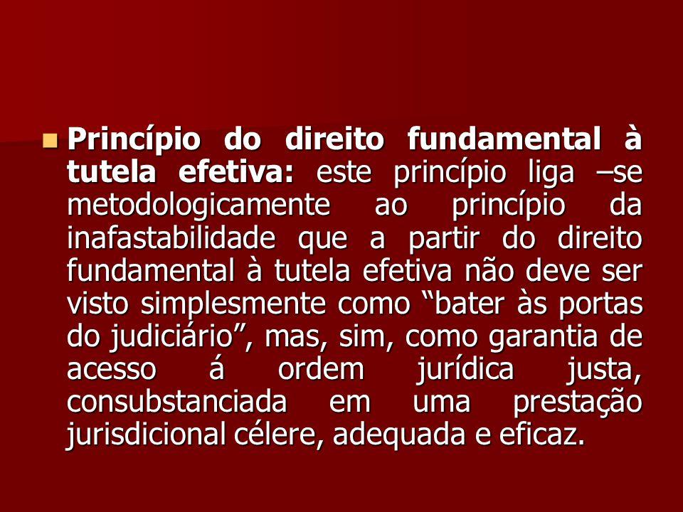  Princípio do direito fundamental à tutela efetiva: este princípio liga –se metodologicamente ao princípio da inafastabilidade que a partir do direit