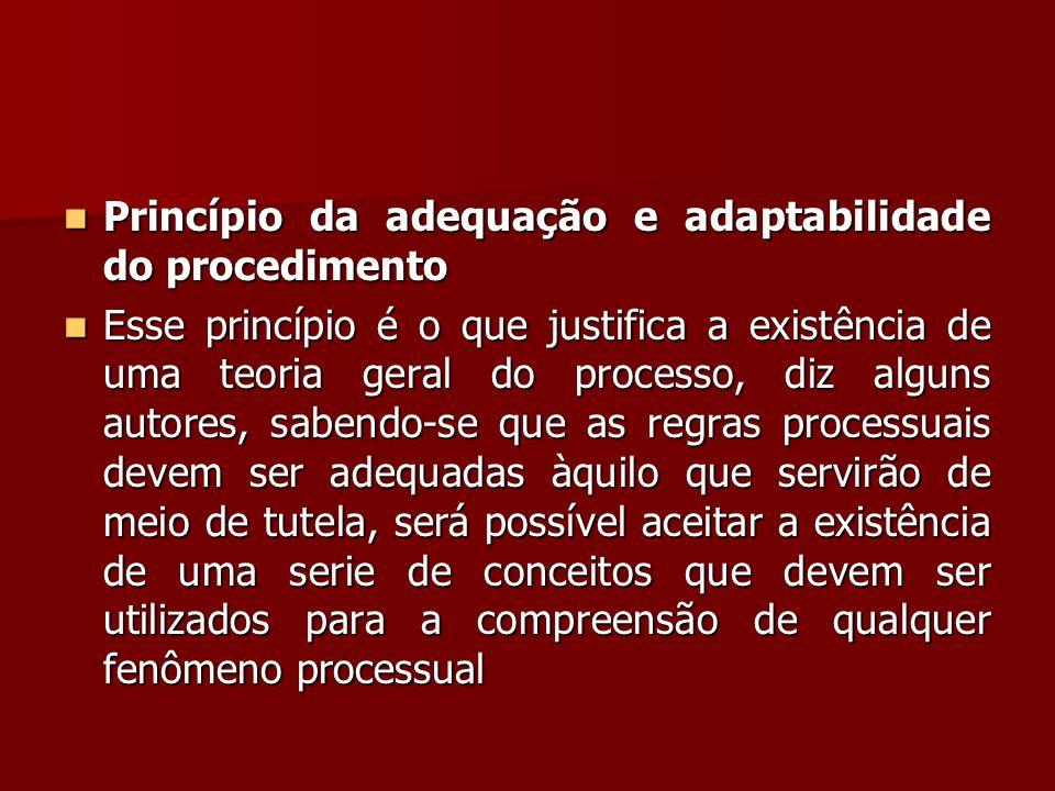  Princípio da adequação e adaptabilidade do procedimento  Esse princípio é o que justifica a existência de uma teoria geral do processo, diz alguns