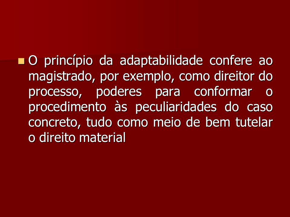  O princípio da adaptabilidade confere ao magistrado, por exemplo, como direitor do processo, poderes para conformar o procedimento às peculiaridades