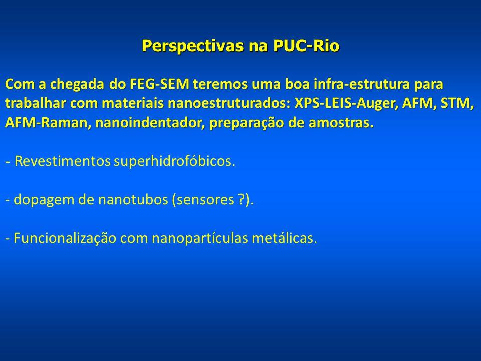 Perspectivas na PUC-Rio Com a chegada do FEG-SEM teremos uma boa infra-estrutura para trabalhar com materiais nanoestruturados: XPS-LEIS-Auger, AFM, S