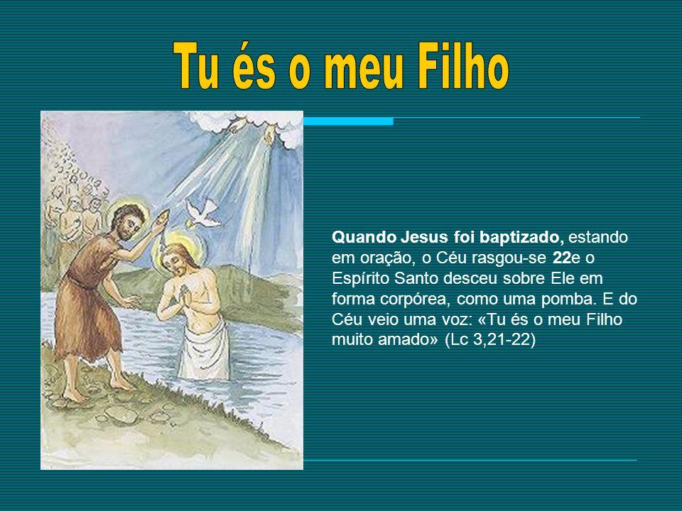 Quando Jesus foi baptizado, estando em oração, o Céu rasgou-se 22e o Espírito Santo desceu sobre Ele em forma corpórea, como uma pomba. E do Céu veio