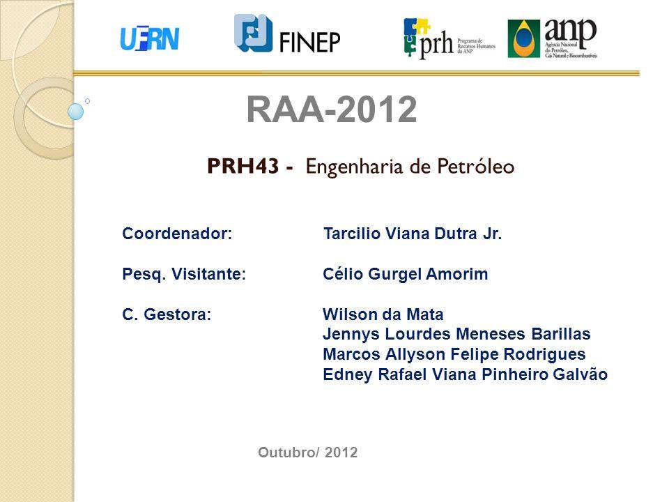 PRH43 - Engenharia de Petróleo RAA-2012 Coordenador:Tarcilio Viana Dutra Jr. Pesq. Visitante:Célio Gurgel Amorim C. Gestora:Wilson da Mata Jennys Lour