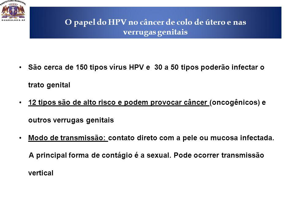 A importância da introdução da vacina HPV O papel do HPV no câncer de colo de útero e nas verrugas genitais •São cerca de 150 tipos vírus HPV e 30 a 5