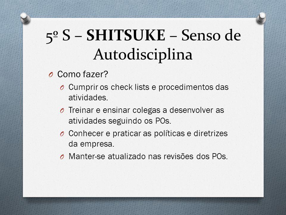 5º S – SHITSUKE – Senso de Autodisciplina O Como fazer.