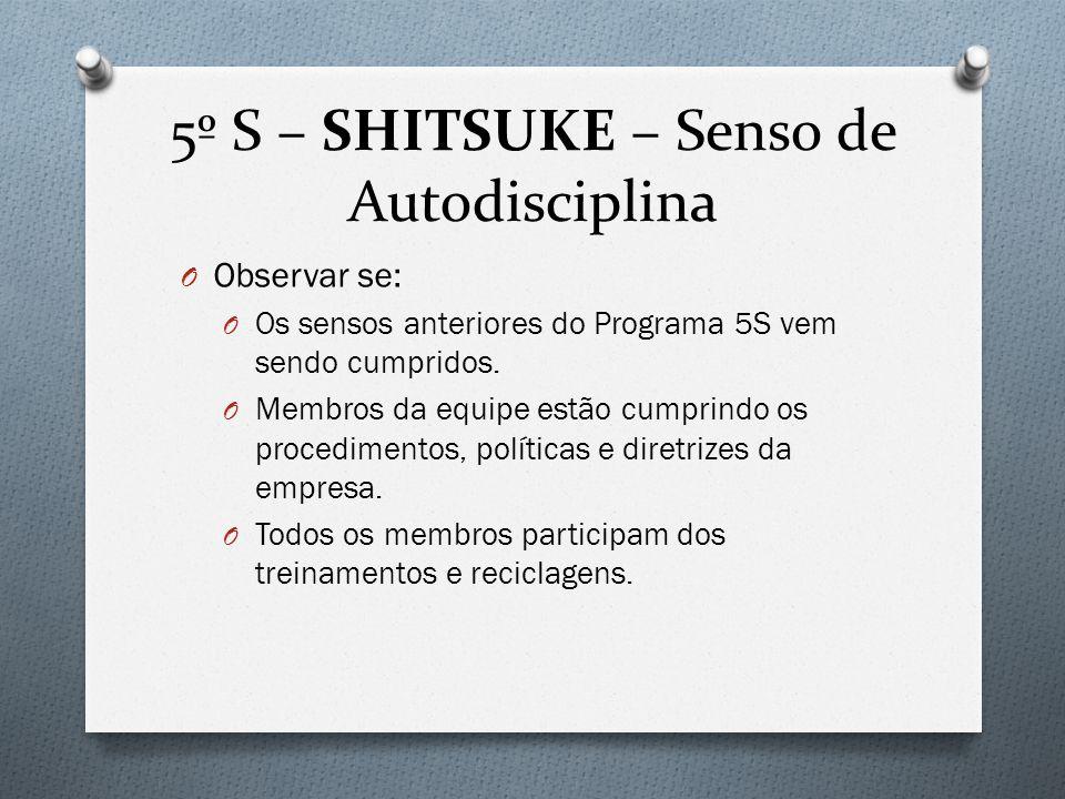 5º S – SHITSUKE – Senso de Autodisciplina O Observar se: O Os sensos anteriores do Programa 5S vem sendo cumpridos.