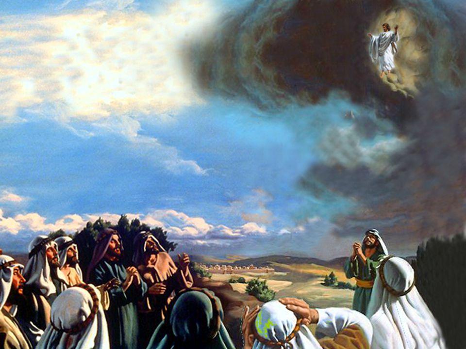Vi novo céu e nova terra, pois o primeiro céu e a primeira terra passaram, e o mar já não existe. Vi novo céu e nova terra, pois o primeiro céu e a primeira terra passaram, e o mar já não existe. Apoc.
