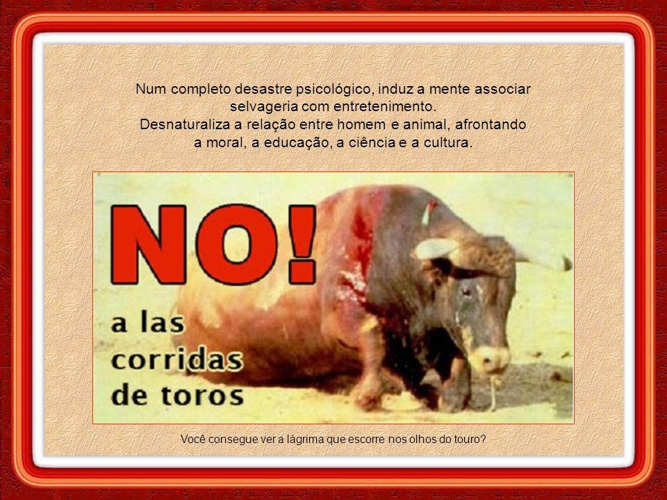 """A matança de animais, principalmente em público, perpetrada pelos """"bons selvagens"""", banaliza a violência e agrava o estado neurótico dos fanáticos atr"""