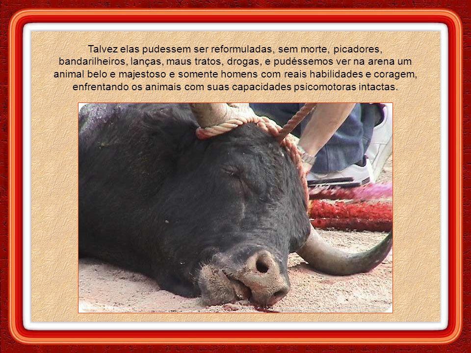 Proibir sumariamente as touradas seria quase utópico. Na mente dos psicopatas, o montante de dinheiro envolvido é mais relevante que o sangue derramad