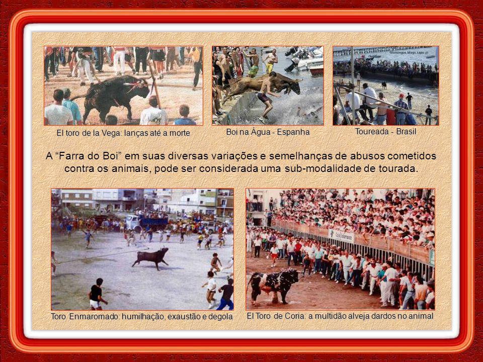 As arenas de touros remontam da Grécia e Roma antigas, se espalhando por toda a península ibérica, sendo ainda muito comuns na Espanha, Portugal, Fran