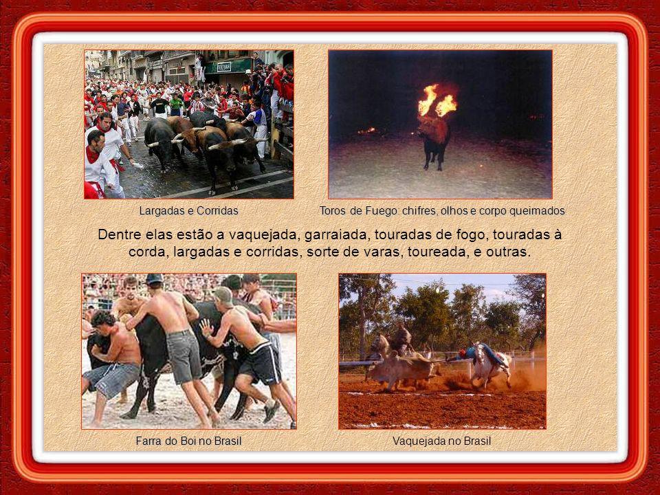 Largadas e Corridas Farra do Boi no Brasil Toros de Fuego: chifres, olhos e corpo queimados Vaquejada no Brasil Dentre elas estão a vaquejada, garraiada, touradas de fogo, touradas à corda, largadas e corridas, sorte de varas, toureada, e outras.