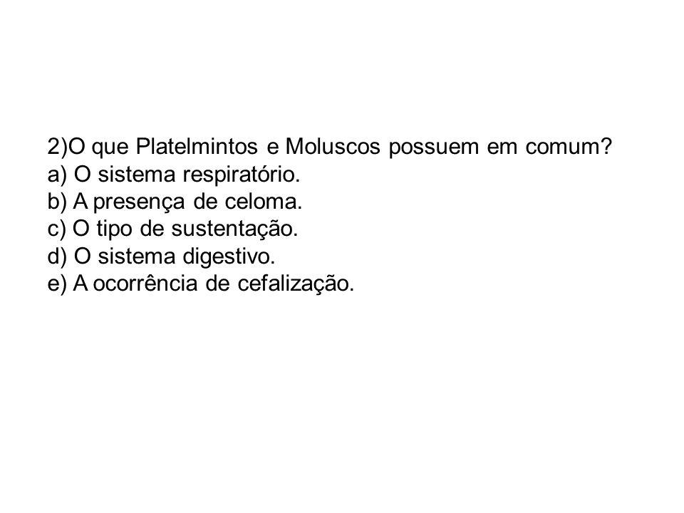 2)O que Platelmintos e Moluscos possuem em comum? a) O sistema respiratório. b) A presença de celoma. c) O tipo de sustentação. d) O sistema digestivo