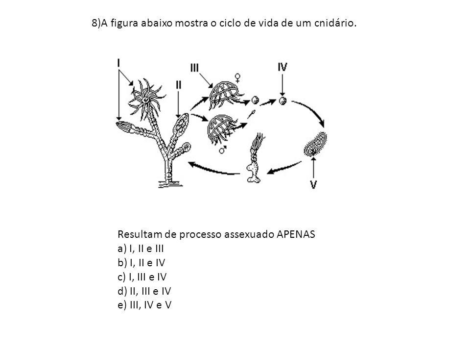 8)A figura abaixo mostra o ciclo de vida de um cnidário. Resultam de processo assexuado APENAS a) I, II e III b) I, II e IV c) I, III e IV d) II, III