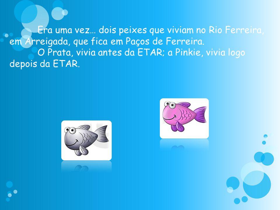 Era uma vez… dois peixes que viviam no Rio Ferreira, em Arreigada, que fica em Paços de Ferreira. O Prata, vivia antes da ETAR; a Pinkie, vivia logo d