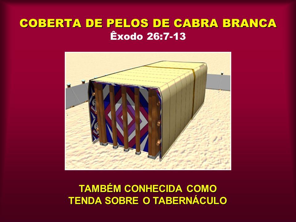 COBERTA DE PELOS DE CABRA BRANCA COBERTA DE PELOS DE CABRA BRANCA Êxodo 26:7-13 TAMBÉM CONHECIDA COMO TENDA SOBRE O TABERNÁCULO