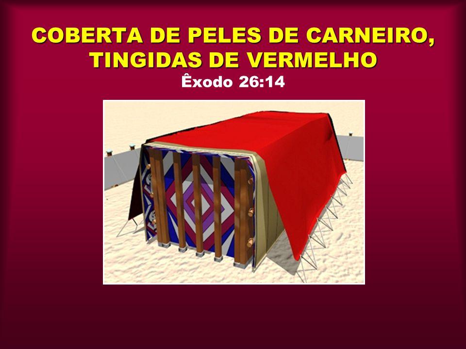 COBERTA DE PELES DE CARNEIRO, TINGIDAS DE VERMELHO COBERTA DE PELES DE CARNEIRO, TINGIDAS DE VERMELHO Êxodo 26:14