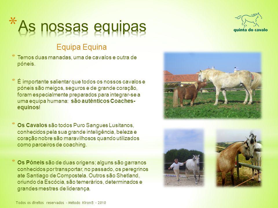 Equipa Equina * Temos duas manadas, uma de cavalos e outra de póneis. * É importante salientar que todos os nossos cavalos e póneis são meigos, seguro