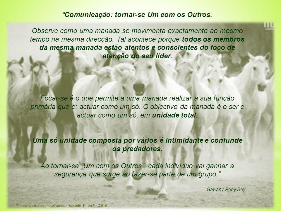 """""""Comunicação: tornar-se Um com os Outros. Observe como uma manada se movimenta exactamente ao mesmo tempo na mesma direcção. Tal acontece porque todos"""