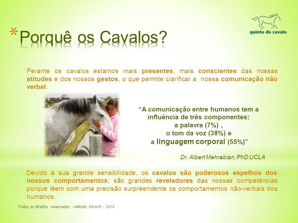 Perante os cavalos estamos mais presentes, mais conscientes das nossas atitudes e dos nossos gestos, o que permite clarificar a nossa comunicação não