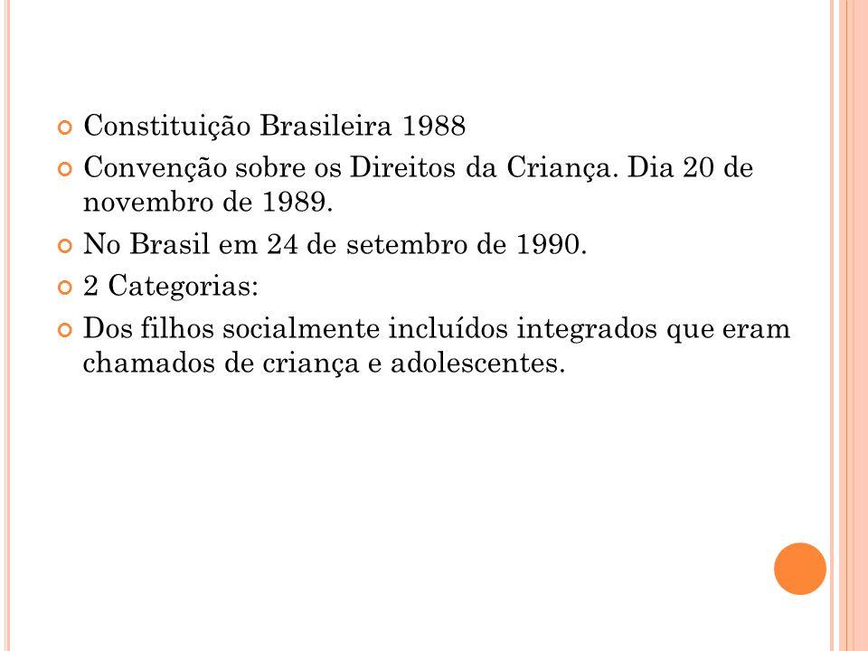 ECA O Reconhecimento dos Direitos da Criança e Adolescentes no Direito Brasileiro