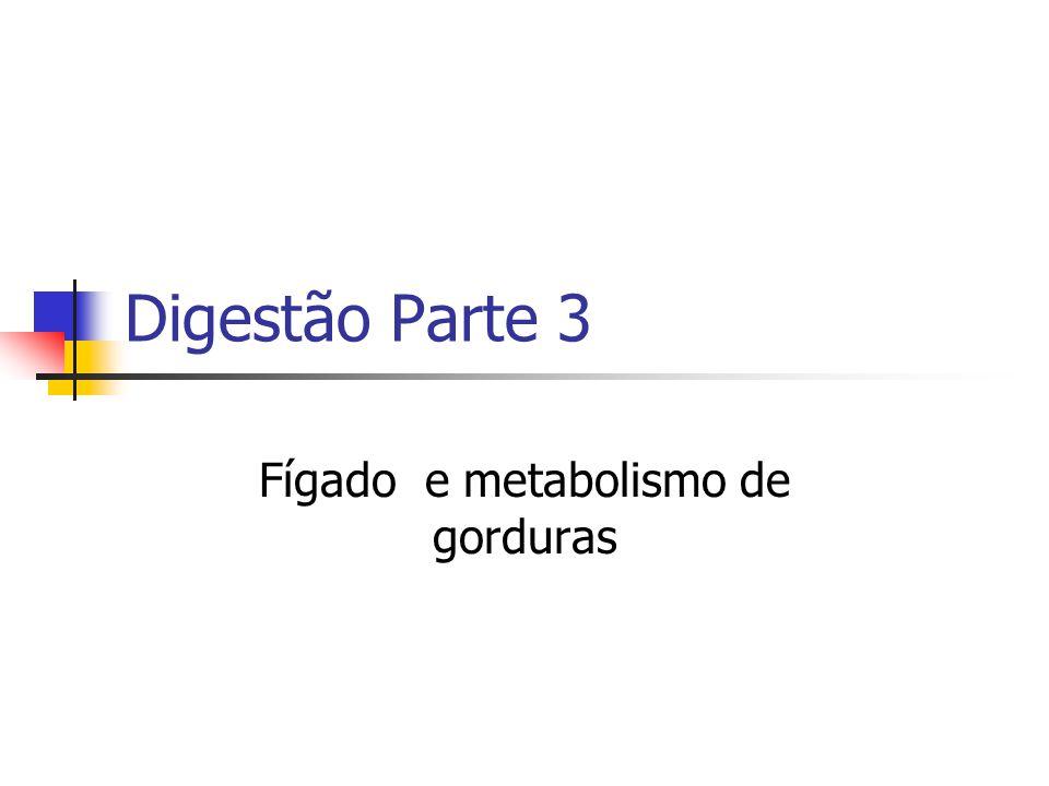 Digestão Parte 3 Fígado e metabolismo de gorduras