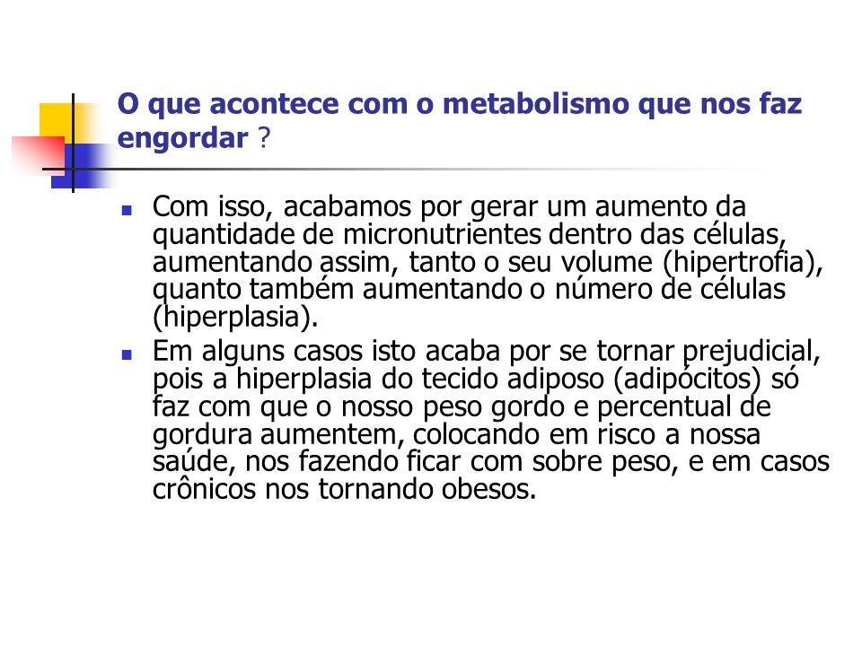 O que acontece com o metabolismo que nos faz engordar ?  Com isso, acabamos por gerar um aumento da quantidade de micronutrientes dentro das células,