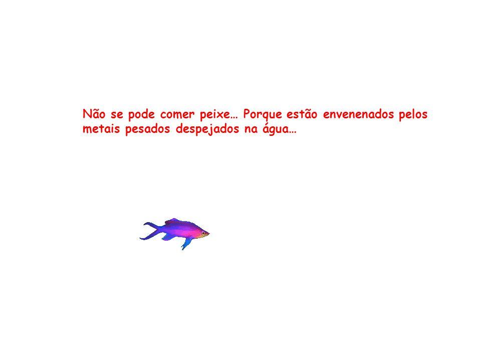 Não se pode comer peixe… Porque estão envenenados pelos metais pesados despejados na água…