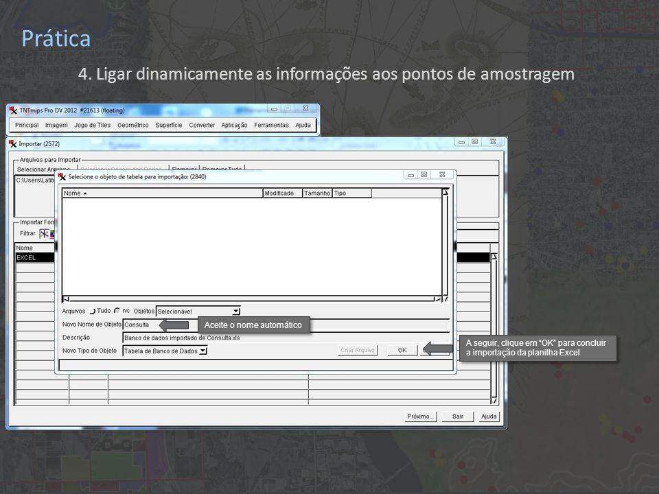 """Prática 4. Ligar dinamicamente as informações aos pontos de amostragem Aceite o nome automático A seguir, clique em """"OK"""" para concluir a importação da"""