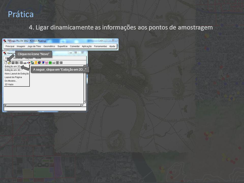 """Prática 4. Ligar dinamicamente as informações aos pontos de amostragem Clique no ícone """"Novo"""" A seguir, clique em """"Exibição em 2D..."""""""