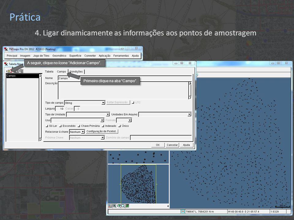 """Prática 4. Ligar dinamicamente as informações aos pontos de amostragem Primeiro clique na aba """"Campo"""". A seguir, clique no ícone """"Adicionar Campo""""."""