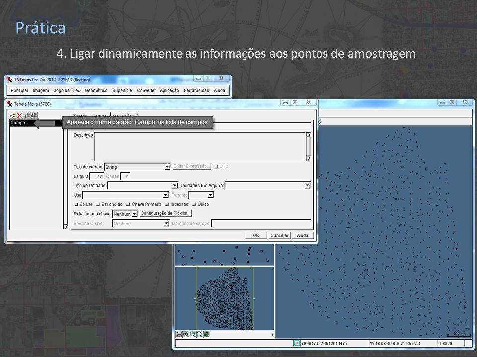 """Prática 4. Ligar dinamicamente as informações aos pontos de amostragem Aparece o nome padrão """"Campo"""" na lista de campos"""