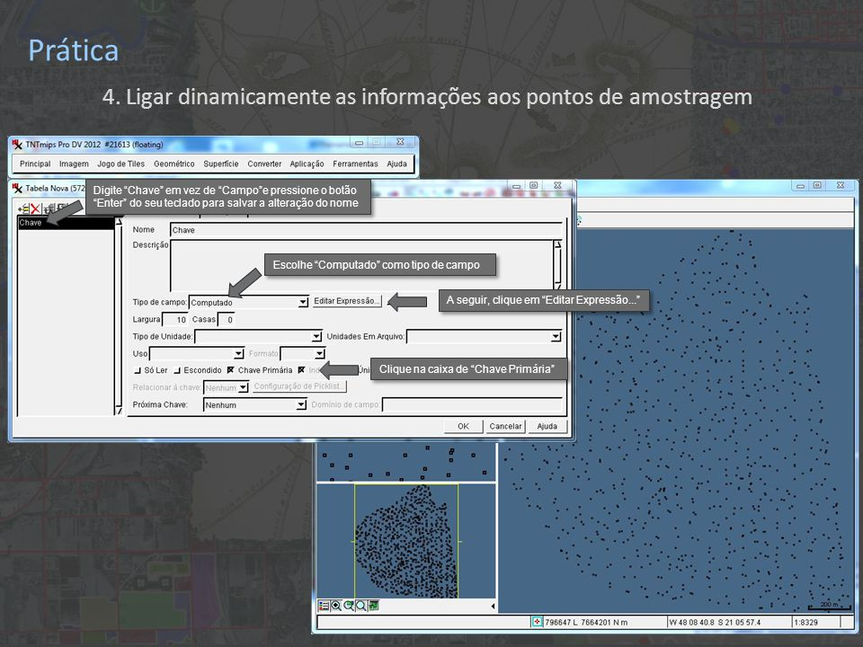 """Prática 4. Ligar dinamicamente as informações aos pontos de amostragem Digite """"Chave"""" em vez de """"Campo""""e pressione o botão """"Enter"""" do seu teclado para"""