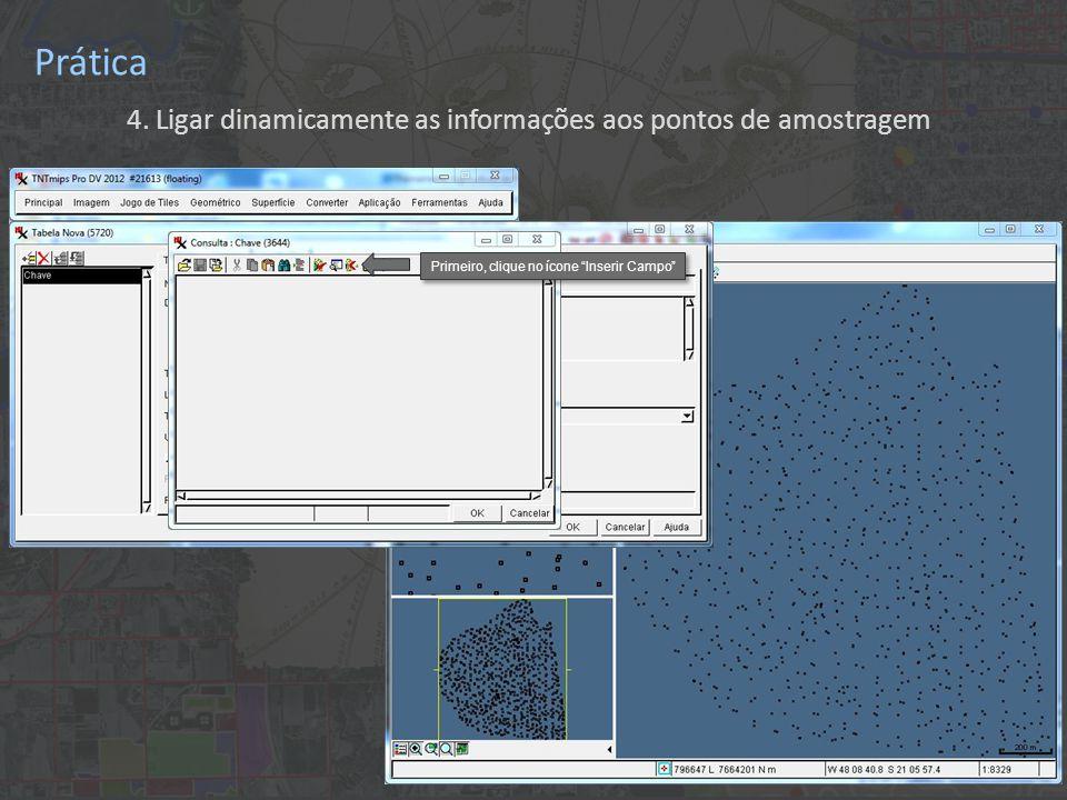 """Prática 4. Ligar dinamicamente as informações aos pontos de amostragem Primeiro, clique no ícone """"Inserir Campo"""""""