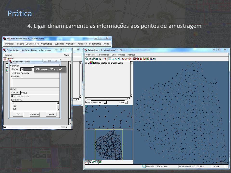 """Prática 4. Ligar dinamicamente as informações aos pontos de amostragem Clique em """"Campo"""""""