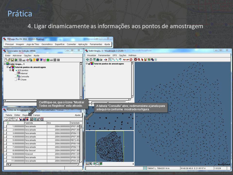 """Prática 4. Ligar dinamicamente as informações aos pontos de amostragem A tabela """"Consulta"""" abre; redimensione a janela para adequá-la conforme mostrad"""