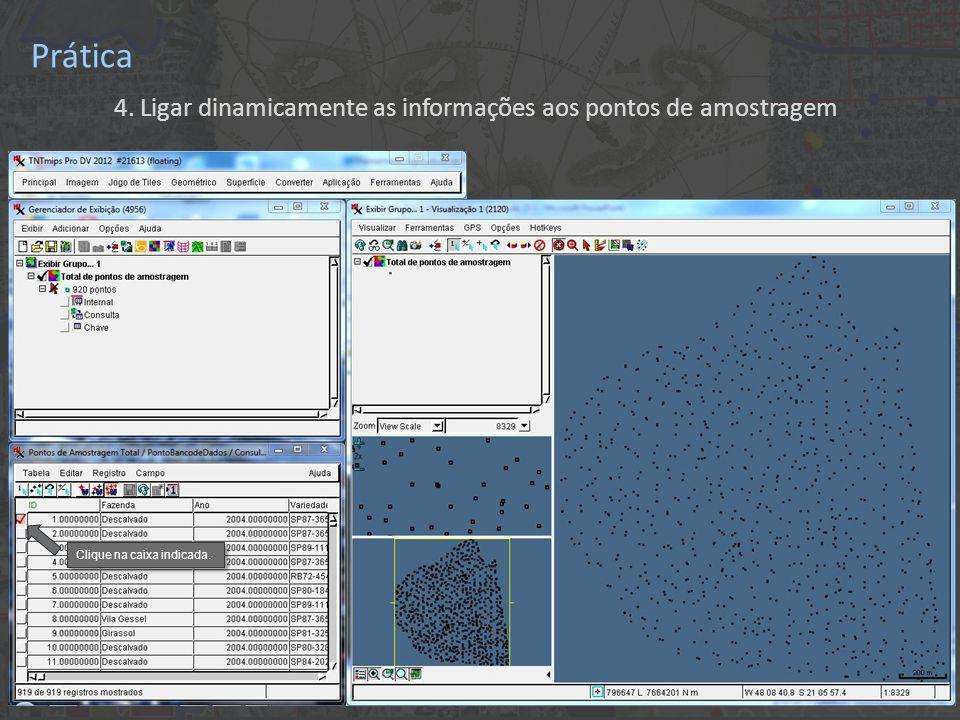 Prática 4. Ligar dinamicamente as informações aos pontos de amostragem Clique na caixa indicada.