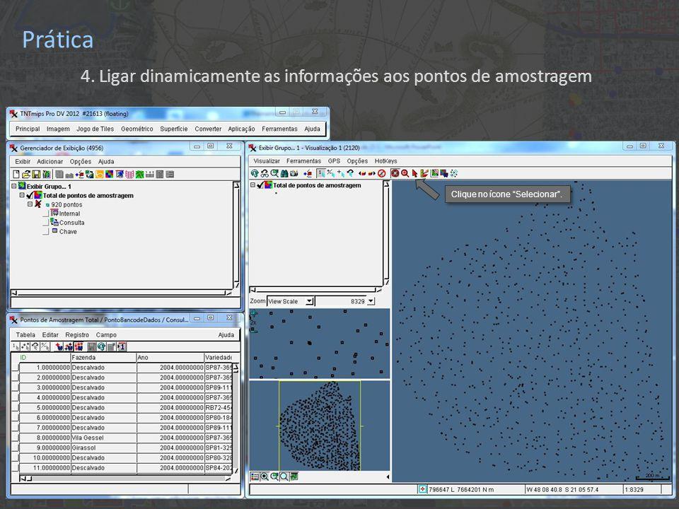 """Prática 4. Ligar dinamicamente as informações aos pontos de amostragem Clique no ícone """"Selecionar""""."""